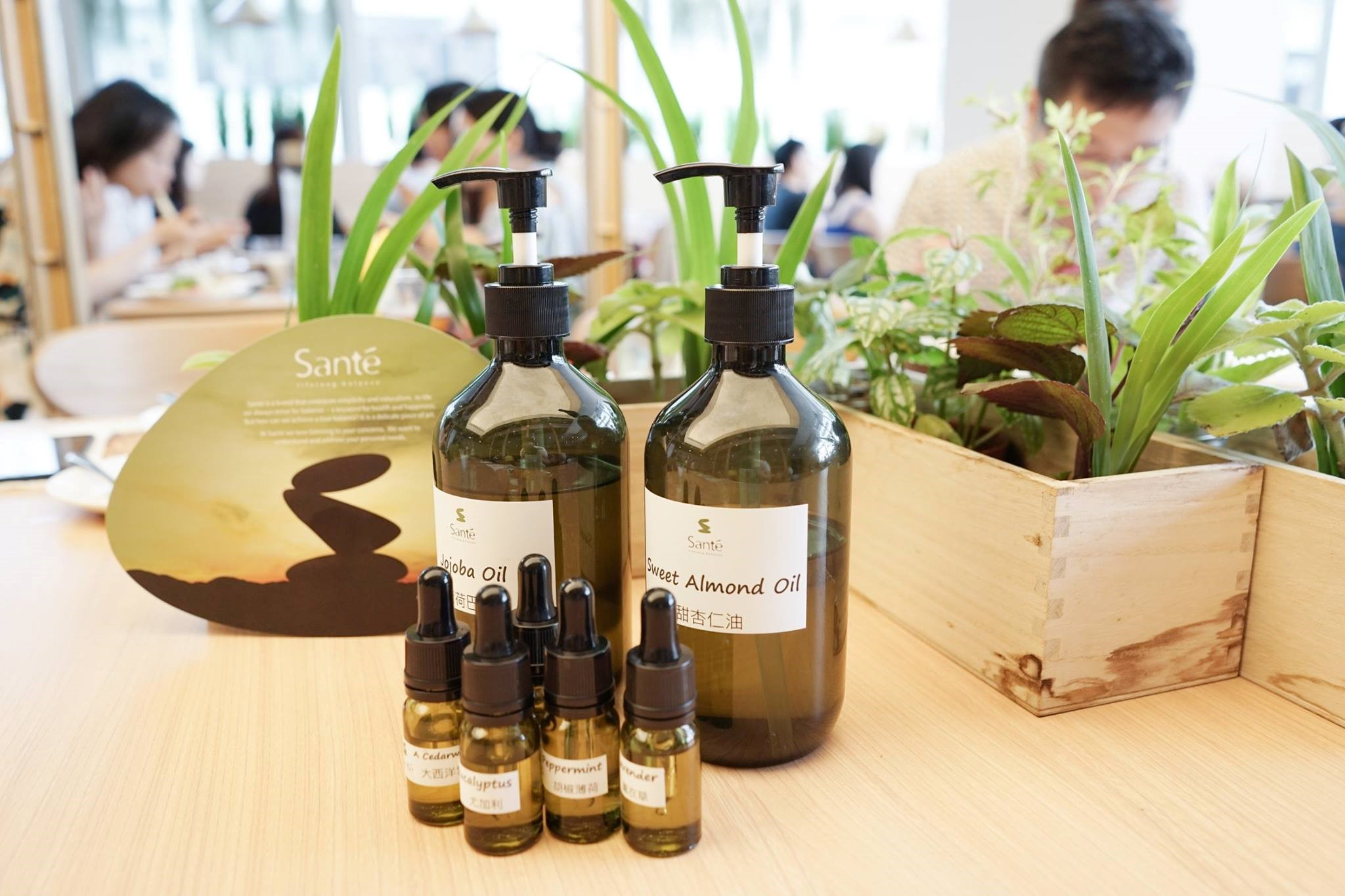A Unique Creation Experience with Essential Oils - WELLNESS - K11
