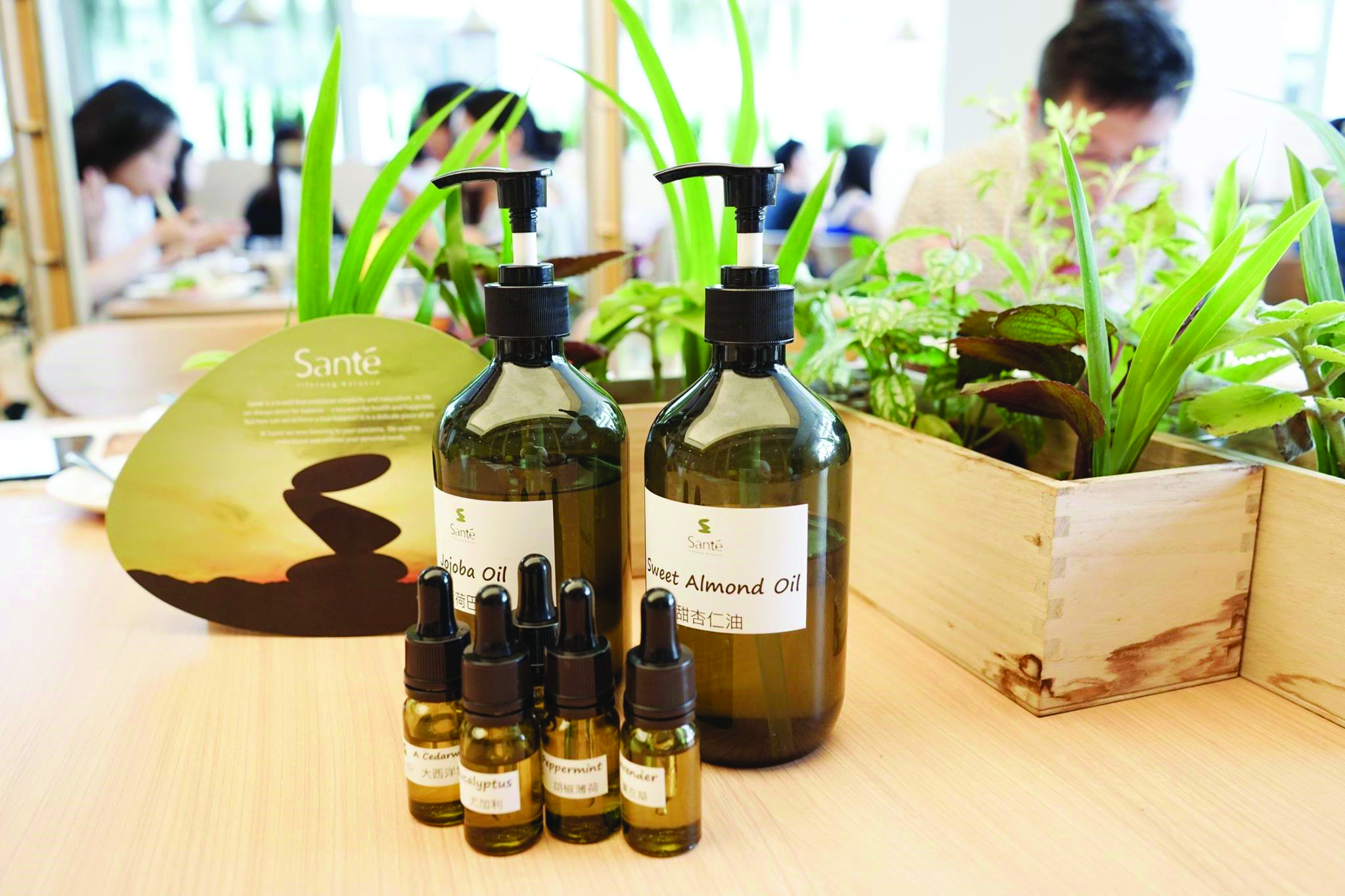 Aromatherapy with acupuncture message - WELLNESS - K11